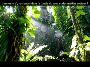 comment-jungle-web-médias-sociaux